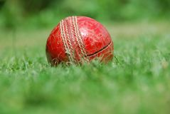 Hit for six – old cricket b Royalty Free Stock Photo